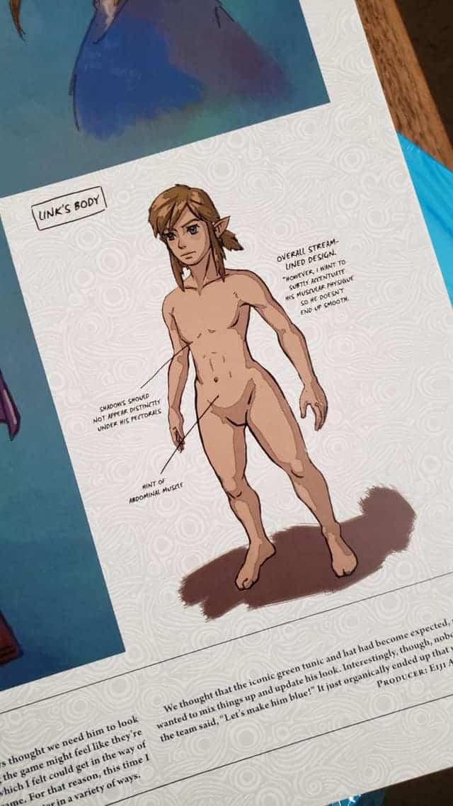 Link-nudo-artwork